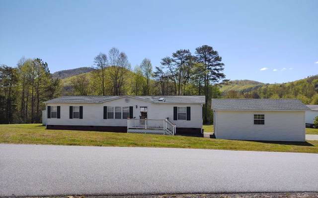 148 Bobcat Lane, Warne, NC 28906 (MLS #306368) :: Path & Post Real Estate