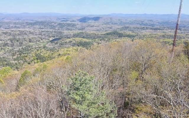 Arrowhead Dr, Mineral Bluff, GA 30513 (MLS #306498) :: RE/MAX Town & Country