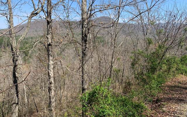LT27A Trillium Heights, Hayesville, NC 28904 (MLS #306910) :: RE/MAX Town & Country