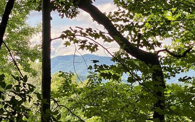 0 Tuts Mountain Rd, Clayton, GA 30525 (MLS #307276) :: Path & Post Real Estate