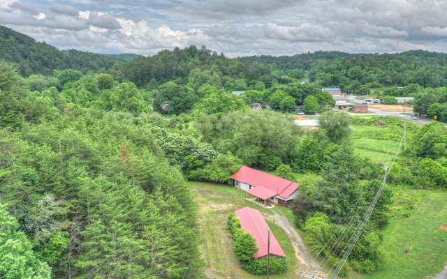 8341 Lakewood Highway, Mineral Bluff, GA 30559 (MLS #307749) :: RE/MAX Town & Country