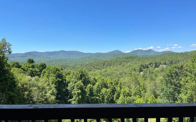 119 Mountain High Drive, Mineral Bluff, GA 30559 (MLS #307925) :: RE/MAX Town & Country