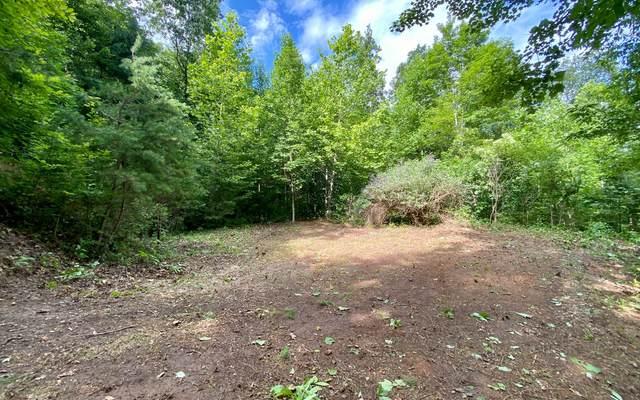 0 Billy Watts Cove Rd, Tiger, GA 30576 (MLS #308293) :: Path & Post Real Estate