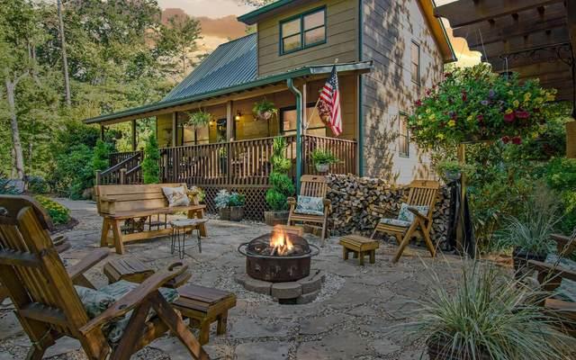 620 Newport Drive, Ellijay, GA 30540 (MLS #308330) :: Path & Post Real Estate