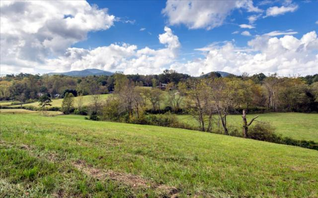 1383 Brasstown Creek, Young Harris, GA 30582 (MLS #265455) :: RE/MAX Town & Country