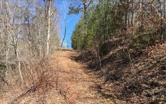 LOT D Retreat On The Ocoee, Copperhill, TN 37317 (MLS #266227) :: RE/MAX Town & Country