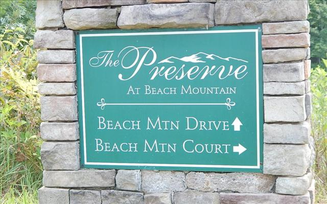 LOT 3 Beach Mtn Court, Brasstown, NC 28909 (MLS #270230) :: RE/MAX Town & Country