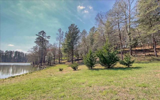 LT 93 Fox Lake Road, Blairsville, GA 30512 (MLS #273715) :: RE/MAX Town & Country