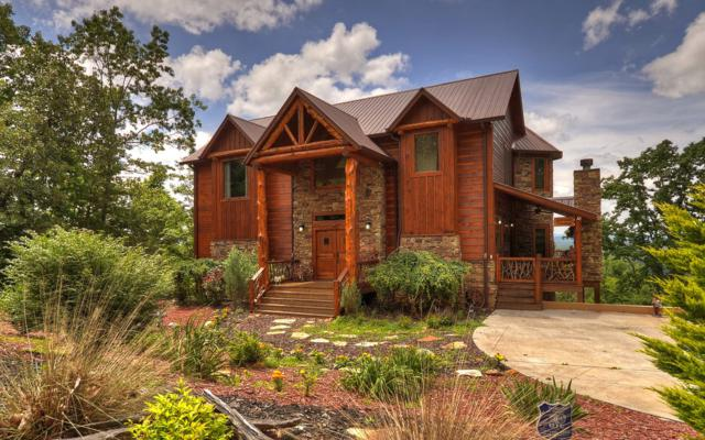 255 Cinnamon Bear Road, Mineral Bluff, GA 30559 (MLS #274458) :: RE/MAX Town & Country