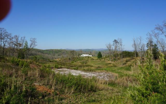 L 53 Old Toccoa Farm, Mineral Bluff, GA 30559 (MLS #277463) :: RE/MAX Town & Country