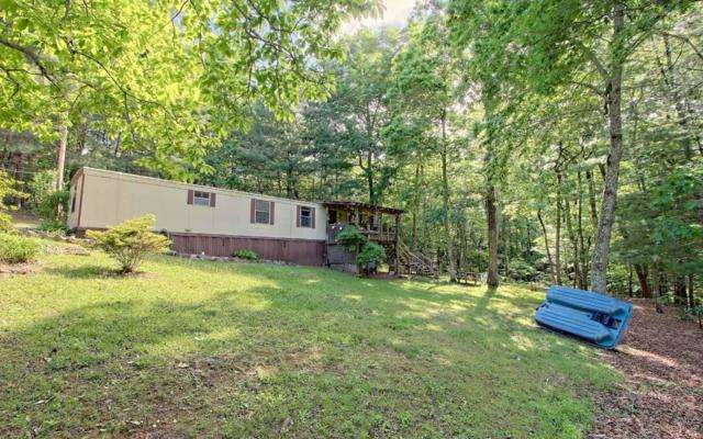 1752 Chatuge Hill Rd, Hiawassee, GA 30546 (MLS #278488) :: RE/MAX Town & Country