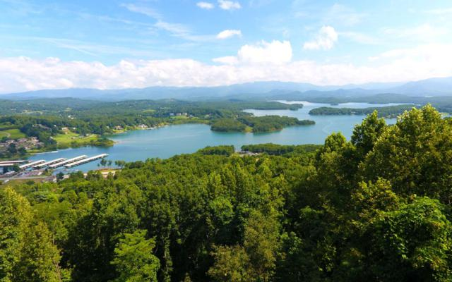 3153 Blue Ridge Trail, Hiawassee, GA 30546 (MLS #285717) :: RE/MAX Town & Country