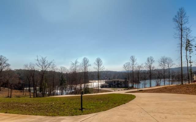 LT 33 Leisure Cove, Blairsville, GA 30512 (MLS #286514) :: Path & Post Real Estate