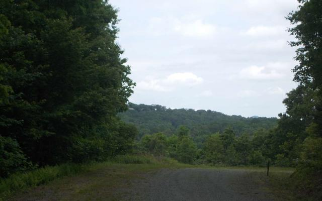 LT 39 Cascading Brook Lane, Blue Ridge, GA 30513 (MLS #287576) :: RE/MAX Town & Country