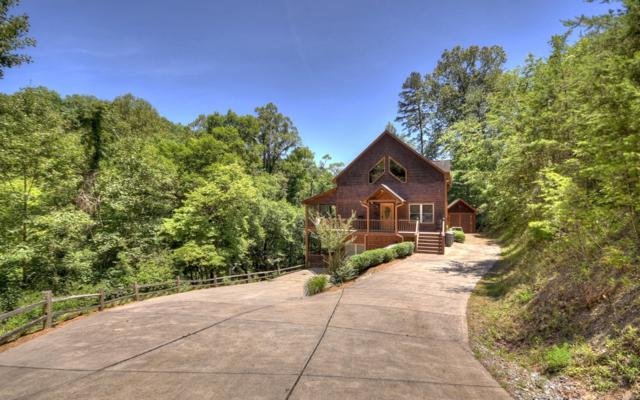 185 Sydney Lane, Mineral Bluff, GA 30559 (MLS #289433) :: RE/MAX Town & Country