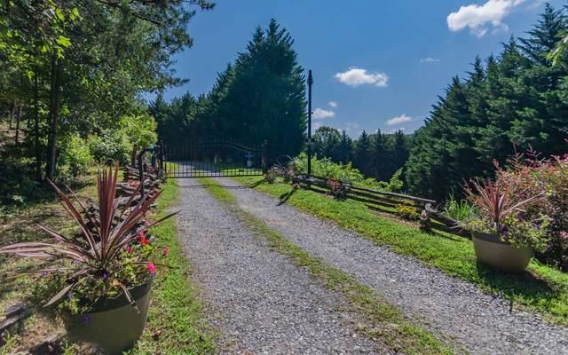 LT 15 Wolf Creek Estates, Mineral Bluff, GA 30559 (MLS #291660) :: Path & Post Real Estate