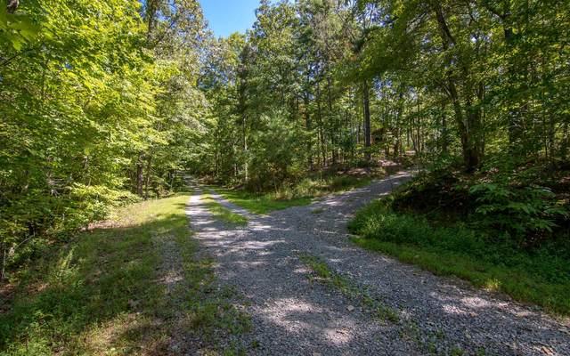 LT 16 Wolf Creek Estates, Mineral Bluff, GA 30559 (MLS #291721) :: Path & Post Real Estate