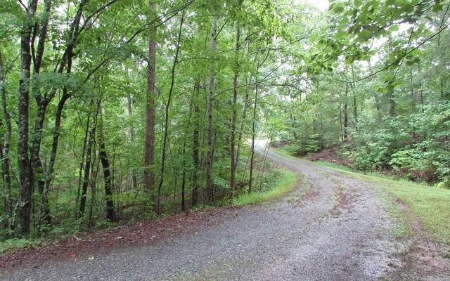LT 21 Wolf Creek Estates, Mineral Bluff, GA 30559 (MLS #291722) :: Path & Post Real Estate