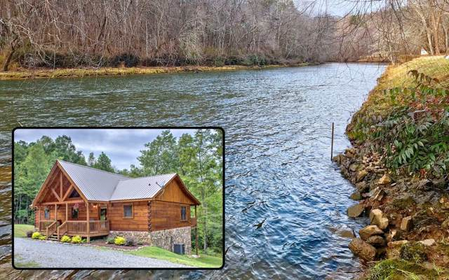 55 Bison Trail, Mineral Bluff, GA 30559 (MLS #292240) :: RE/MAX Town & Country