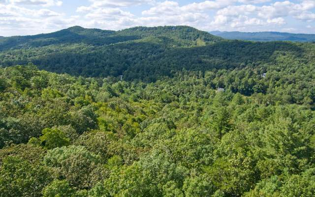 LT18 Hawks Claw Estates, Blairsville, GA 30512 (MLS #294857) :: RE/MAX Town & Country
