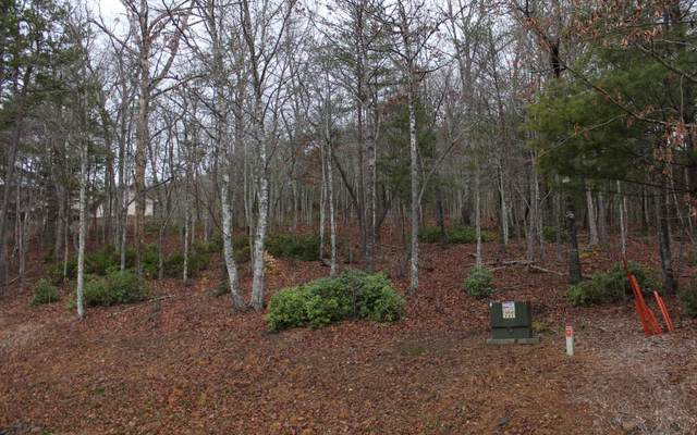 2 Thunder Road, Hayesville, NC 28904 (MLS #295204) :: RE/MAX Town & Country