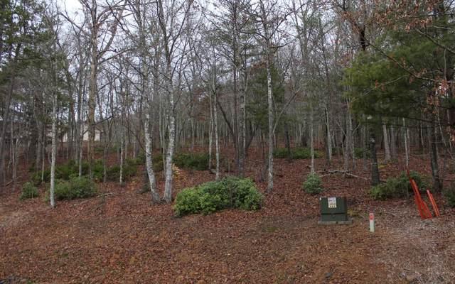 2 Thunder Road, Hayesville, NC 28904 (MLS #295204) :: Path & Post Real Estate