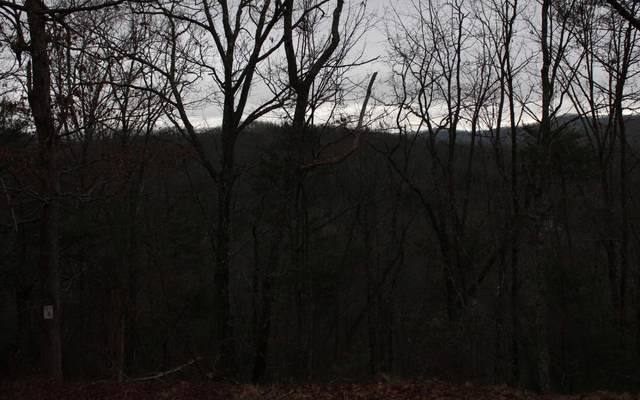 4 Thunder Road, Hayesville, NC 28904 (MLS #295219) :: RE/MAX Town & Country