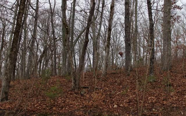 9 Thunder Road, Hayesville, NC 28904 (MLS #295224) :: Path & Post Real Estate