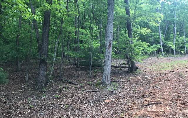 LOT15 Mountain Shadow Dr, Young Harris, GA 30582 (MLS #296970) :: Path & Post Real Estate