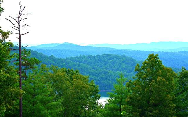 5B-5C Heavenly View Lane, Murphy, NC 28906 (MLS #298152) :: Path & Post Real Estate