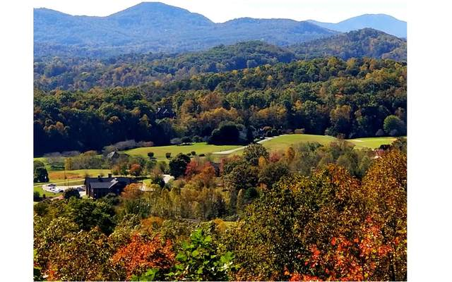 LT25 Solitude Lane, Hayesville, NC 28904 (MLS #299088) :: Path & Post Real Estate