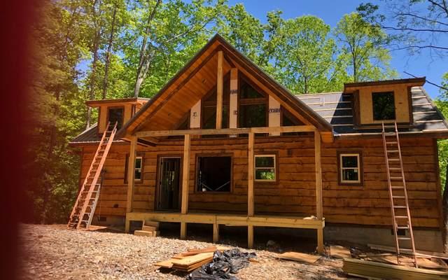 19 Winding Brook Trail, Morganton, GA 30560 (MLS #299130) :: Path & Post Real Estate