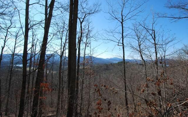 LT51B Broken Arrow Trail, Hayesville, NC 28904 (MLS #301115) :: Path & Post Real Estate