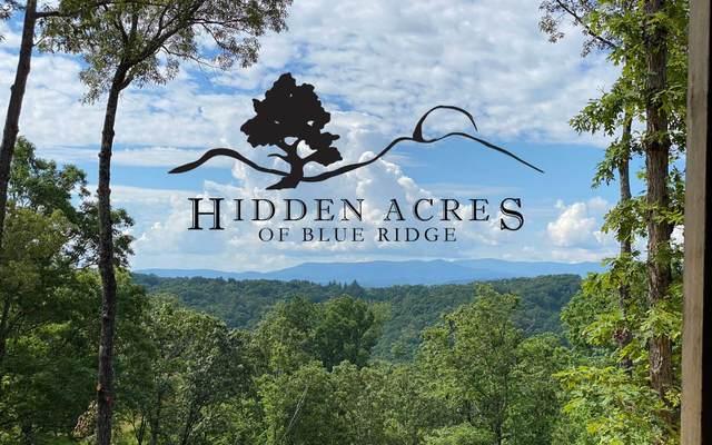 LOT 8 Hidden Acres, Blue Ridge, GA 30513 (MLS #303817) :: Path & Post Real Estate