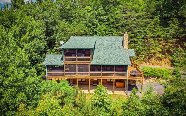 168 Mountain Lookout, Morganton, GA 30560 (MLS #307842) :: RE/MAX Town & Country