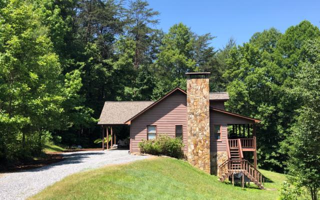 202 Laurel Ridge Dr, Blue Ridge, GA 30513 (MLS #283571) :: RE/MAX Town & Country