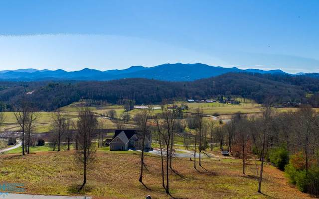 345 Jack Groves Lane, Hayesville, NC 28904 (MLS #289950) :: RE/MAX Town & Country