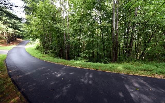 LT 20 Lk Forest Estates, Hiawassee, GA 30546 (MLS #300040) :: Path & Post Real Estate