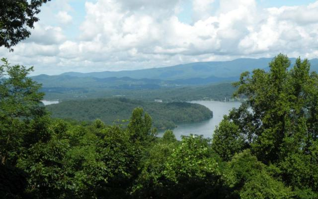 509 Eagles View Circle, Hayesville, NC 28904 (MLS #281084) :: RE/MAX Town & Country