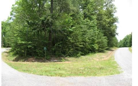 LOT16 Pheasant Trail, Hayesville, NC 28904 (MLS #172151) :: RE/MAX Town & Country