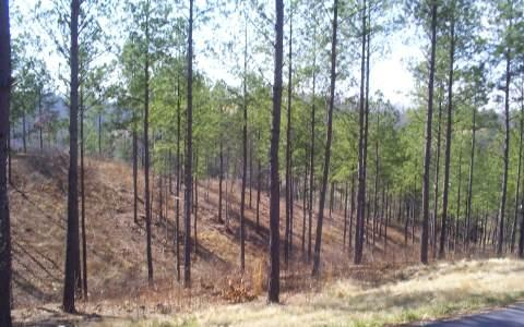 LOT27 Grand Vista Dr. - Photo 1