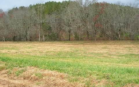LT 22 Mcglamery Farm, Hayesville, NC 28904 (MLS #184111) :: RE/MAX Town & Country