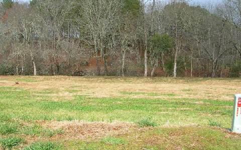 LT 17 Mcglamery Farm, Hayesville, NC 28904 (MLS #184115) :: RE/MAX Town & Country