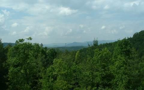 99 Dasali Way, Murphy NC, NC 28906 (MLS #200095) :: RE/MAX Town & Country