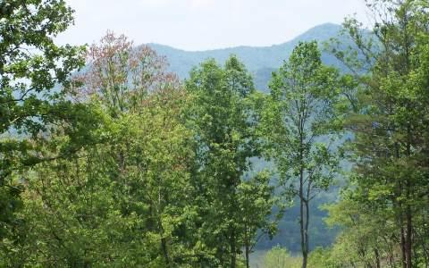 LOT 1 Trails End, Young Harris, GA 30582 (MLS #214034) :: RE/MAX Town & Country