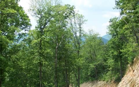 LOT 4 Trails End, Young Harris, GA 30582 (MLS #214037) :: RE/MAX Town & Country