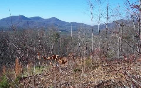 LOT 7 Trails End, Young Harris, GA 30582 (MLS #214040) :: RE/MAX Town & Country