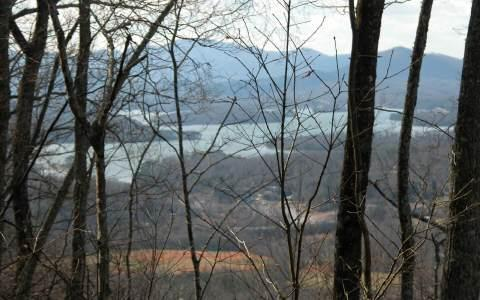 Cold Branch Dr, Hayesville, NC 28904 (MLS #225907) :: RE/MAX Town & Country