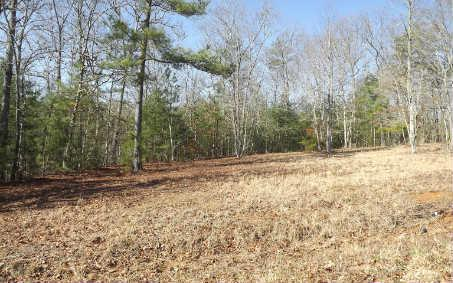 LOT 7 Autumn Hills, Blairsville, GA 30512 (MLS #226362) :: RE/MAX Town & Country