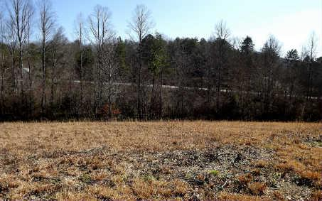 LOT17 Autumn Hills, Blairsville, GA 30512 (MLS #226369) :: RE/MAX Town & Country